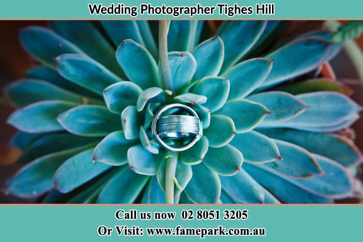 Photo of the wedding ring design to the leaves of a plant Tighes Hill NSW 2297