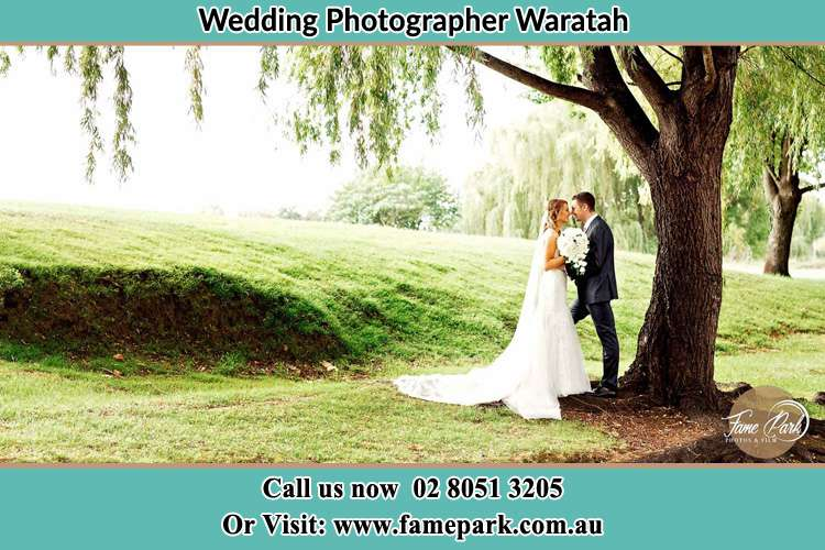 Cinematic photo of the Bride and the Groom kissing under the tree Waratah NSW 2298